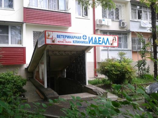 Ветеринарная клиника Сочи «Идеал»