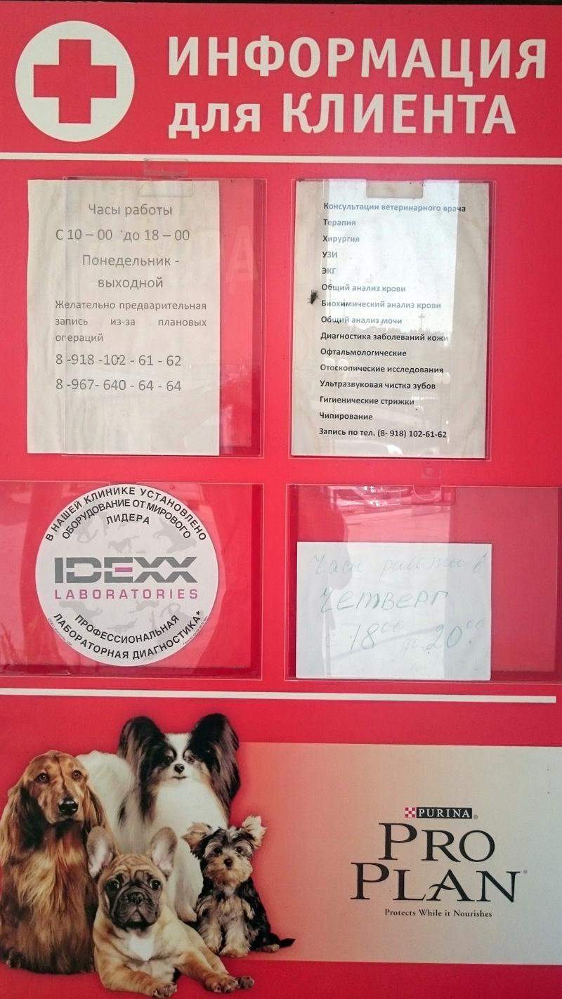 """Информационный стенд ветеринарного кабинета на остановке """"Новая заря"""", город Сочи."""