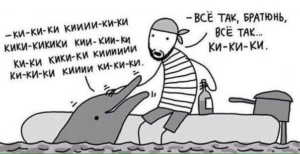 Дельфин-собеседник