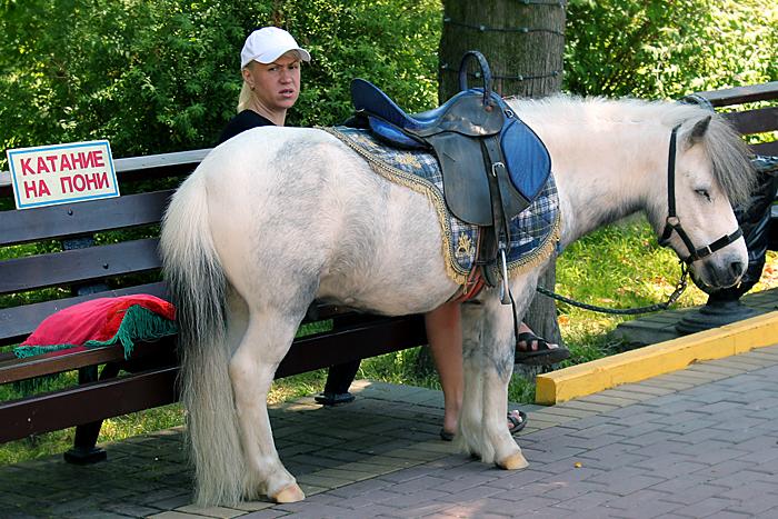 Аттракцион «Катание на грустном пони»