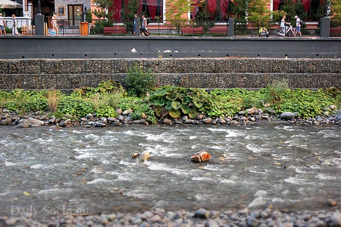Река Мзымта на территории курорта «Роза Хутор» (Эстосадок)