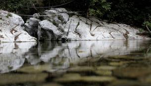 Вода в каньоне чистейшая.