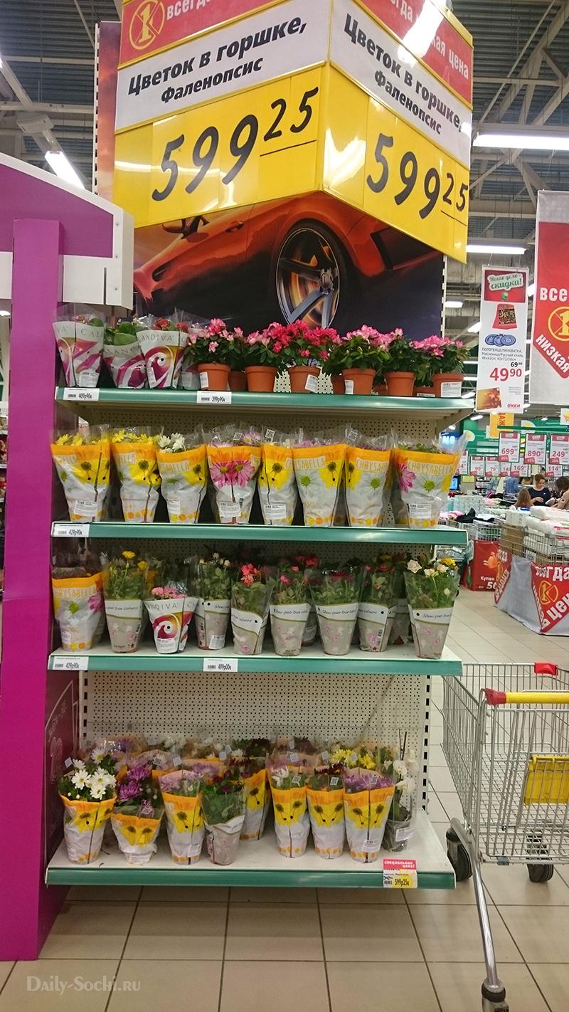 Паллета цветов в супермаркете ОКЕЙ