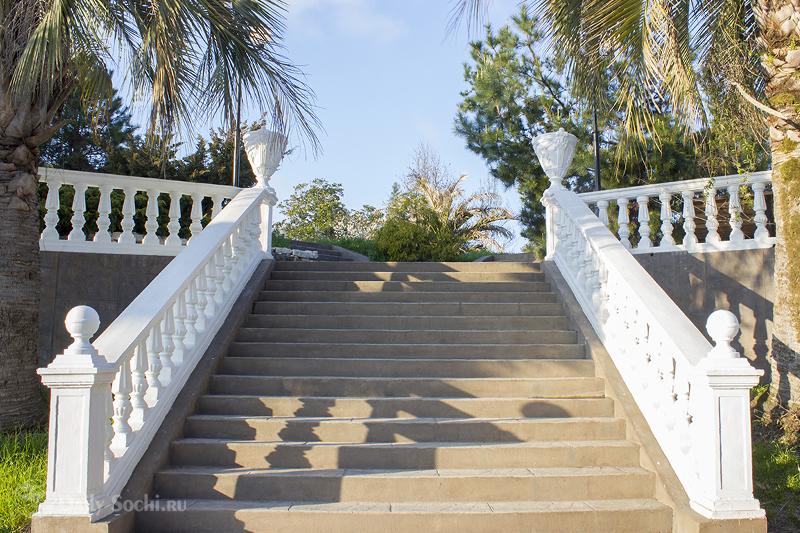 """Парк """"Южные культуры"""" в Сочи. Лестница в парке. Синее небо и пальмы."""
