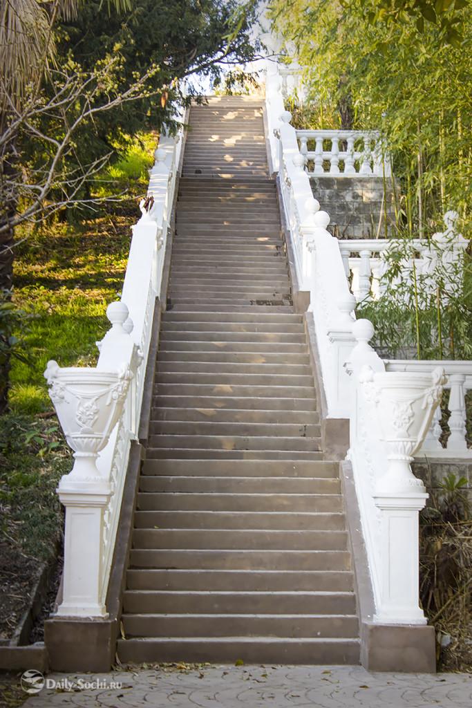 Лестничный марш справа от главного пруда парка