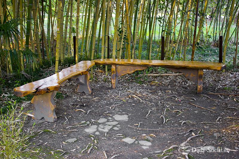 Лавочка, в бамбуковых зарослях.