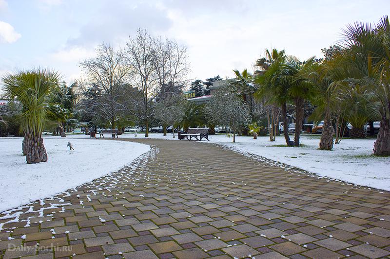 Парк, возле морского порта Сочи