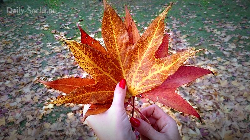 Венок из листьев - шаг 1