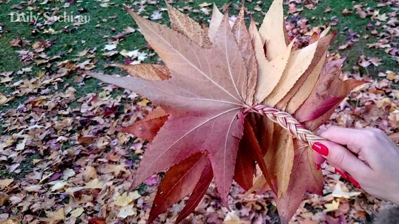 Венок из листьев с обратной стороны
