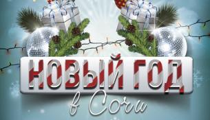 Празднование Нового года в Сочи