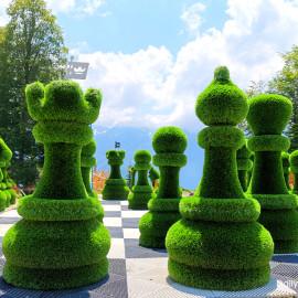 Шахматы в парке Зелёная планета