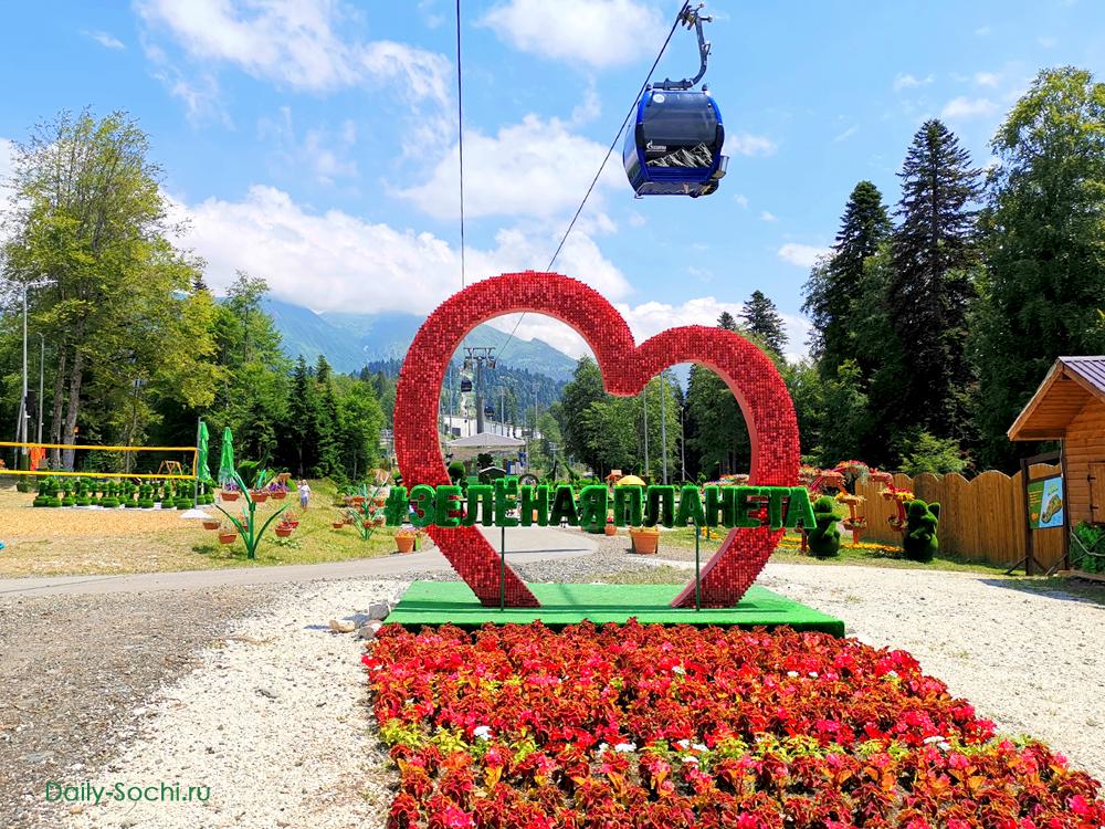 Парк Зеленая планета в Сочи